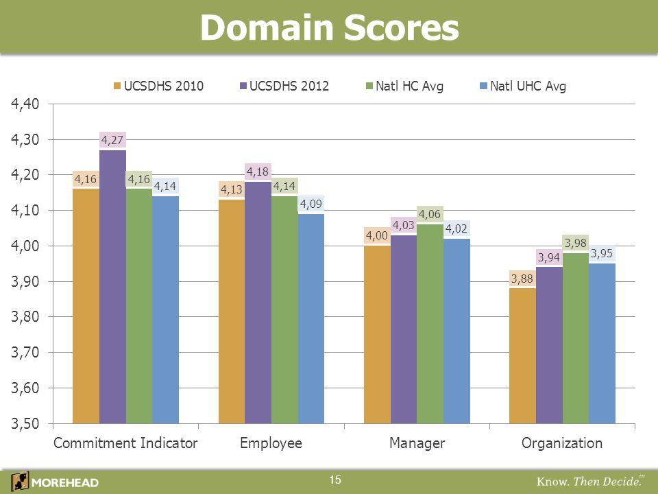 Domain Scores 15