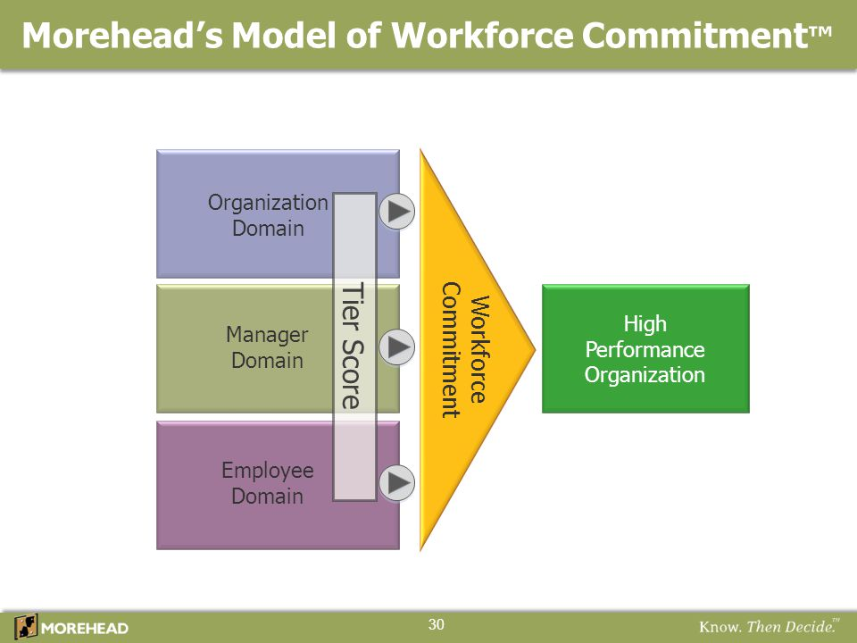 Morehead's Model of Workforce Commitment ™ 30 High Performance Organization Workforce Commitment Organization Domain Manager Domain Employee Domain Ti