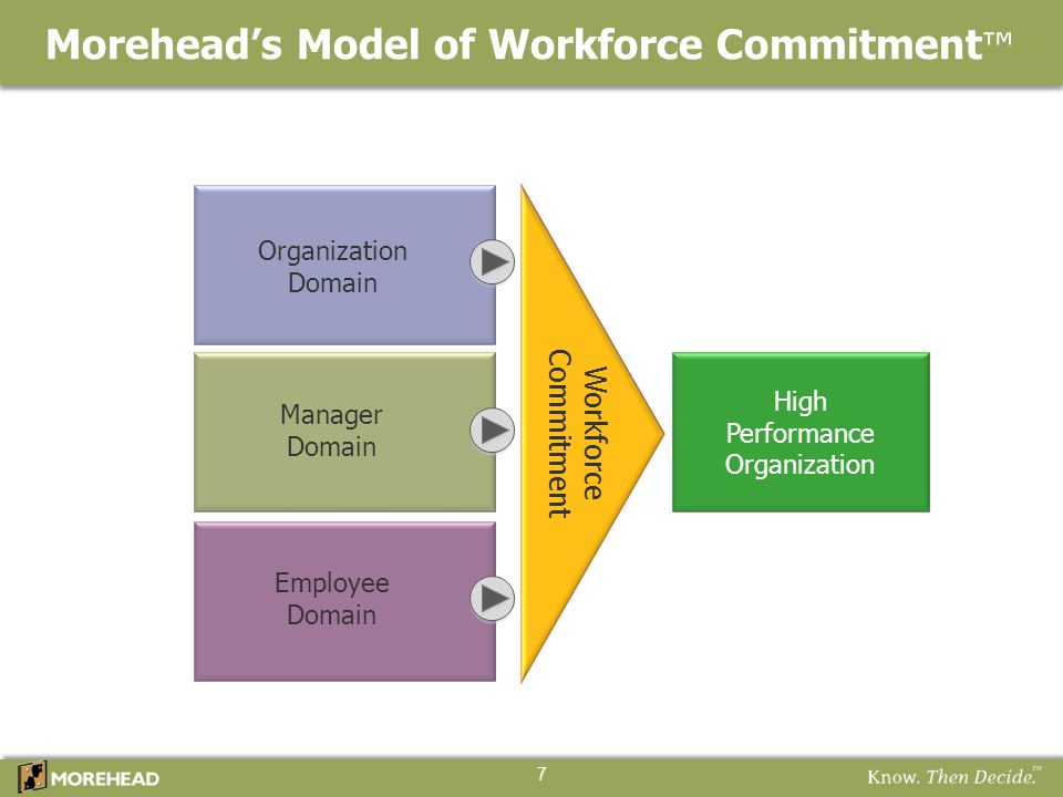 Morehead's Model of Workforce Commitment ™ High Performance Organization Workforce Commitment Organization Domain Manager Domain Employee Domain 7