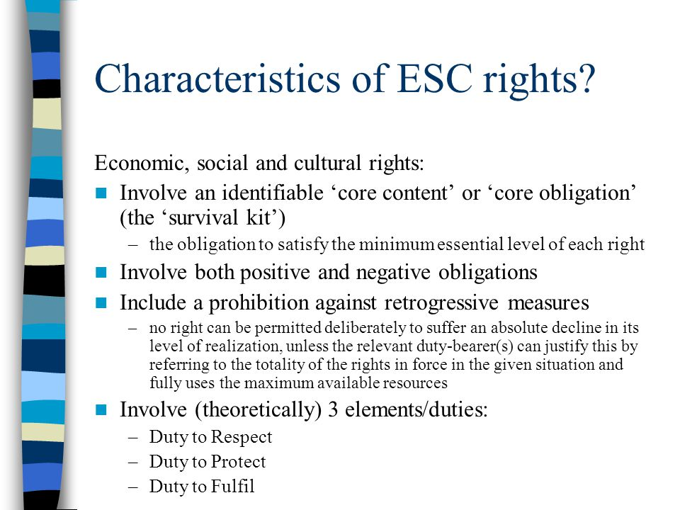 Characteristics of ESC rights? Economic, social and cultural rights: Involve an identifiable 'core content' or 'core obligation' (the 'survival kit')
