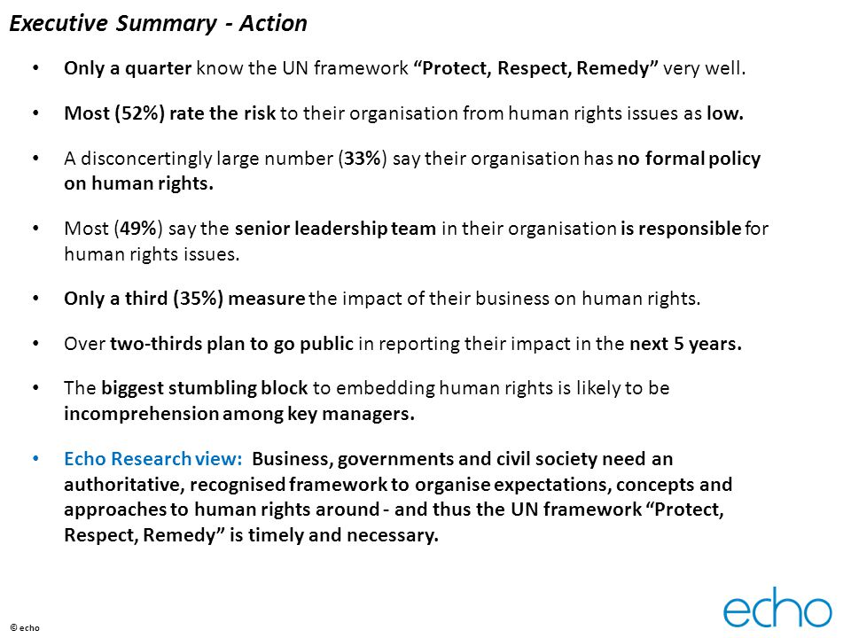 "Executive Summary - Action Only a quarter know the UN framework ""Protect, Respect, Remedy"" very well. Most (52%) rate the risk to their organisation f"