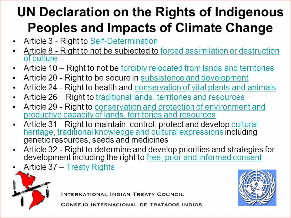 UN Declaration on the Rights of Indigenous Peoples and Impacts of Climate Change Article 3 - Right to Self-Determination Article 8 - Right to not be subjected to forced assimilation or destruction of culture Article 10 – Right to not be forcibly relocated from lands and territories Article 20 - Right to be secure in subsistence and development Article 24 - Right to health and conservation of vital plants and animals Article 26 – Right to traditional lands, territories and resources Article 29 - Right to conservation and protection of environment and productive capacity of lands, territories and resources Article 31 - Right to maintain, control, protect and develop cultural heritage, traditional knowledge and cultural expressions including genetic resources, seeds and medicines Article 32 - Right to determine and develop priorities and strategies for development including the right to free, prior and informed consent Article 37 – Treaty Rights