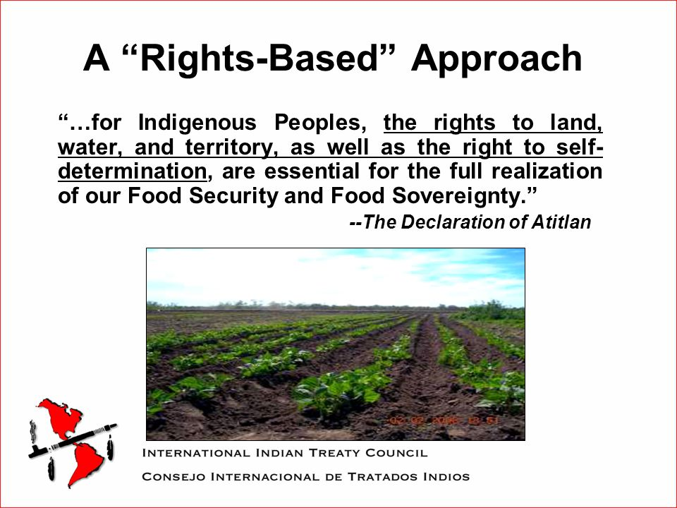 A Rights-Based Approach …for Indigenous Peoples, the rights to land, water, and territory, as well as the right to self- determination, are essential for the full realization of our Food Security and Food Sovereignty. --The Declaration of Atitlan
