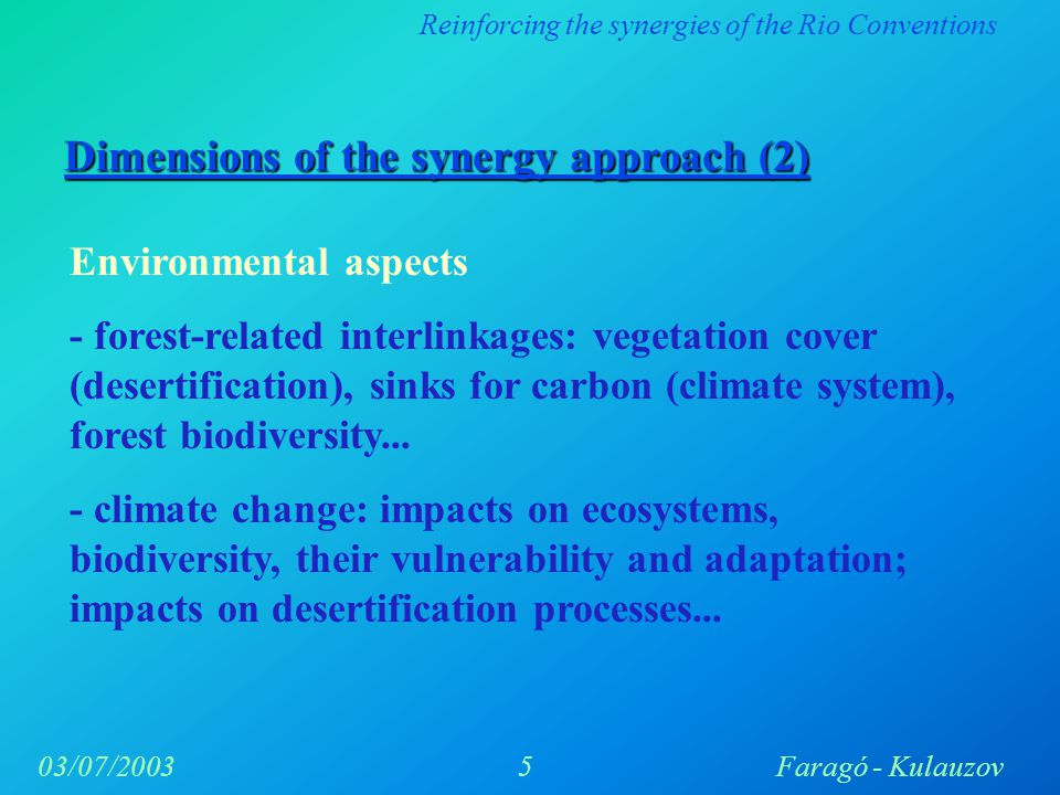Reinforcing the synergies of the Rio Conventions 5Faragó - Kulauzov03/07/2003 Dimensions of the synergy approach (2) Environmental aspects - forest-related interlinkages: vegetation cover (desertification), sinks for carbon (climate system), forest biodiversity...