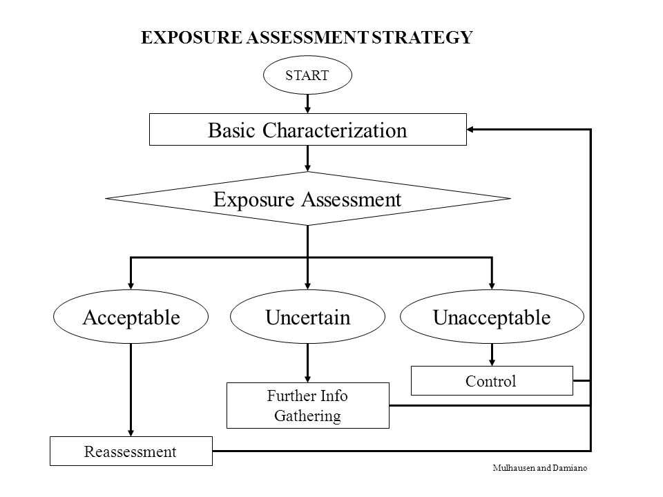 START Basic Characterization Exposure Assessment AcceptableUncertainUnacceptable Reassessment Further Info Gathering Control EXPOSURE ASSESSMENT STRATEGY Mulhausen and Damiano