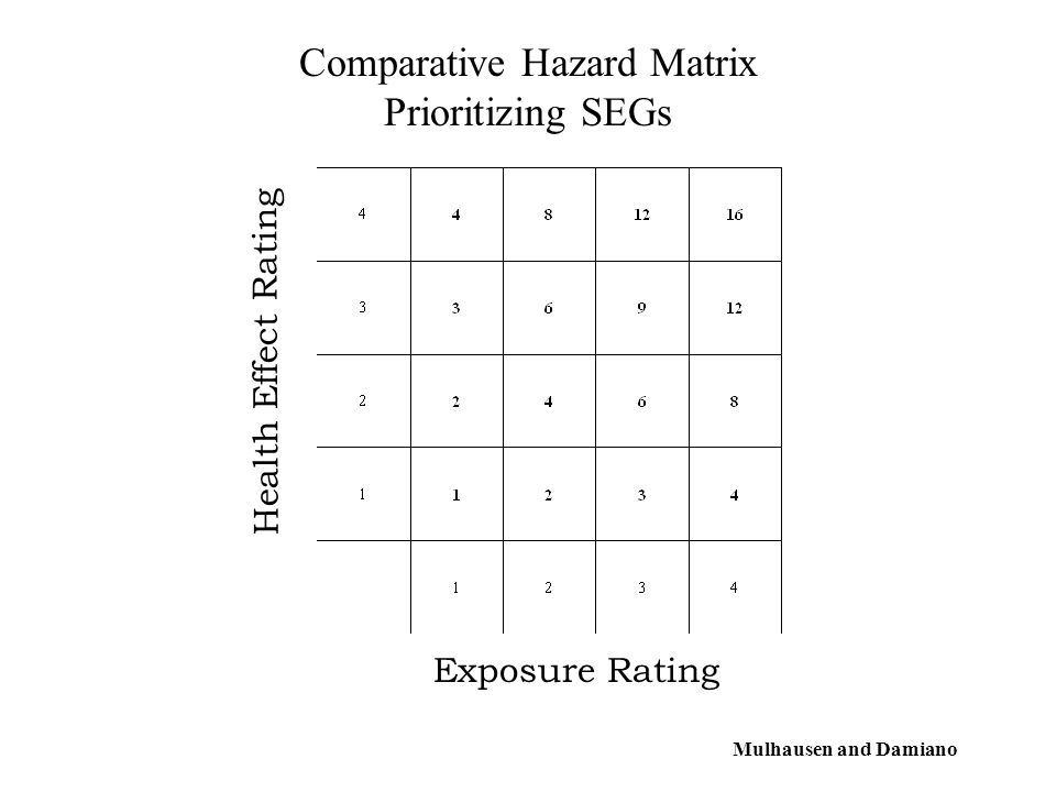 Comparative Hazard Matrix Prioritizing SEGs Exposure Rating Health Effect Rating Mulhausen and Damiano