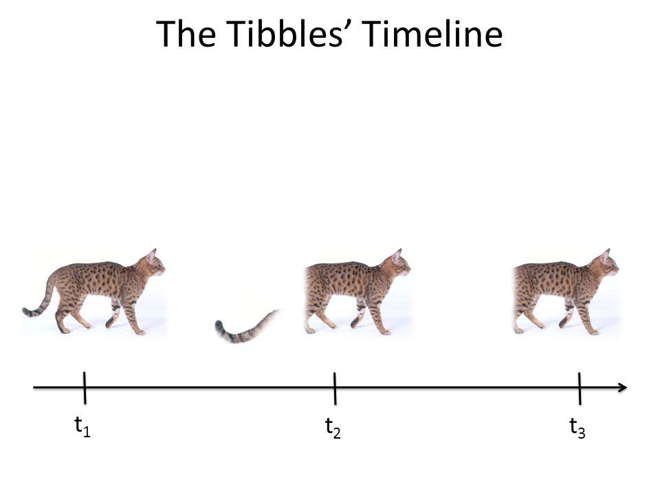 At t3, Tibbles = Tib? Tib