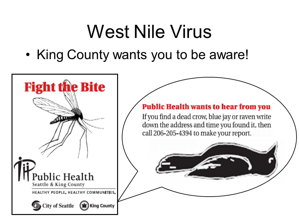 West Nile Virus King County wants you to be aware!