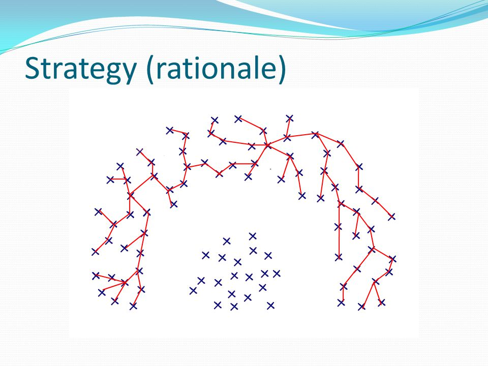 Strategy (rationale)