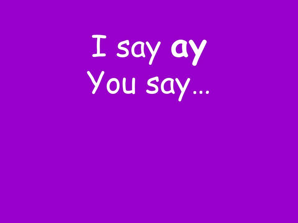 I say ay You say…
