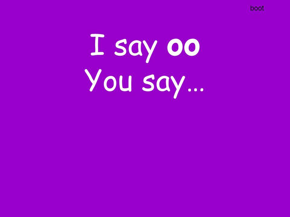 I say ai You say…