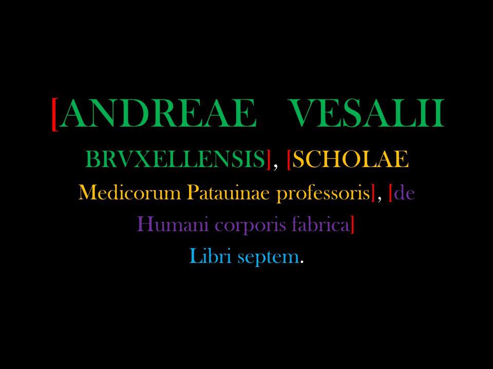 [ANDREAE VESALII BRVXELLENSIS], [SCHOLAE Medicorum Patauinae professoris], [de Humani corporis fabrica] Libri septem.