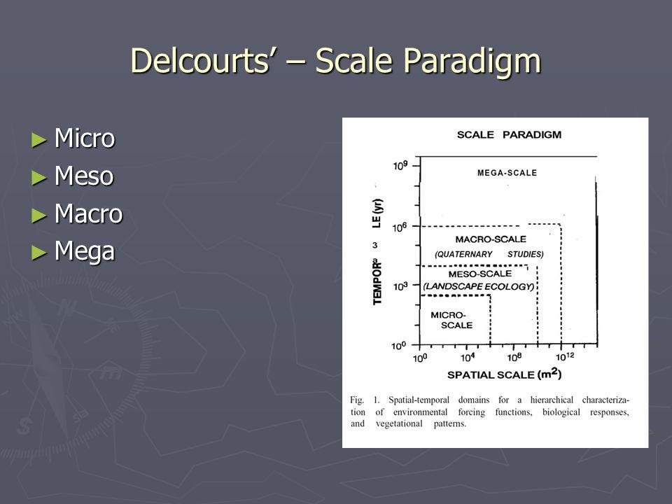 Delcourts' – Scale Paradigm ► Micro ► Meso ► Macro ► Mega