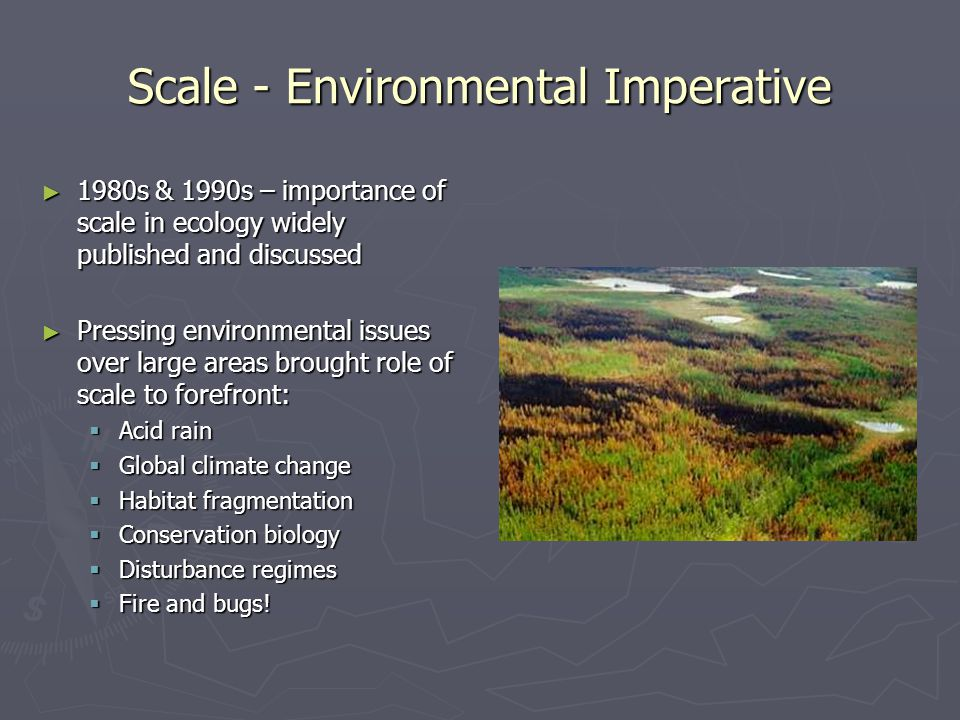 Scale - Environmental Imperative ► 1980s & 1990s – importance of scale in ecology widely published and discussed ► Pressing environmental issues over
