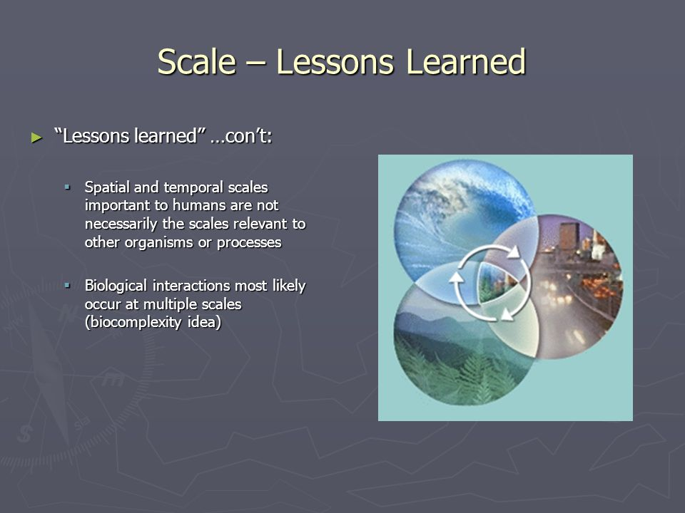 Scale Terminology (see Table 2.1) ► Scale terminology – is not used consistently; leads to confusion ► Scale – refers to spatial or temporal dimension of an object or area - vs - - vs - ► Level of organization – place within a biotic (or other organizational) hierarchy (e.g., organism, population, community, etc.)