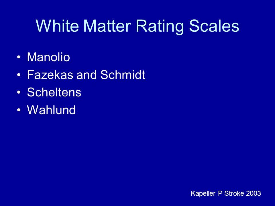 White Matter Rating Scales Manolio Fazekas and Schmidt Scheltens Wahlund Kapeller P Stroke 2003