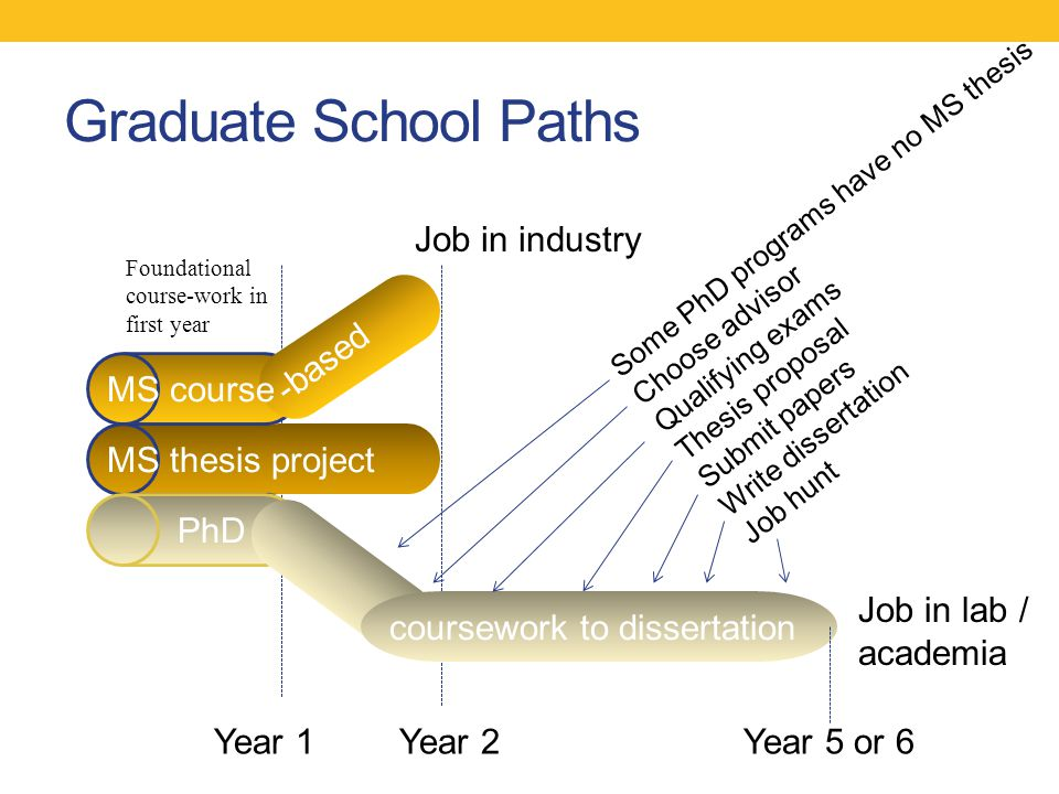 Graduate School Paths Some PhD programs have no MS thesis Choose advisor Qualifying exams Thesis proposal Submit papers Write dissertation Job hunt Year 1 MS course MS thesis project PhD -based Job in industry Job in lab / academia coursework to dissertation Year 2Year 5 or 6 Foundational course-work in first year