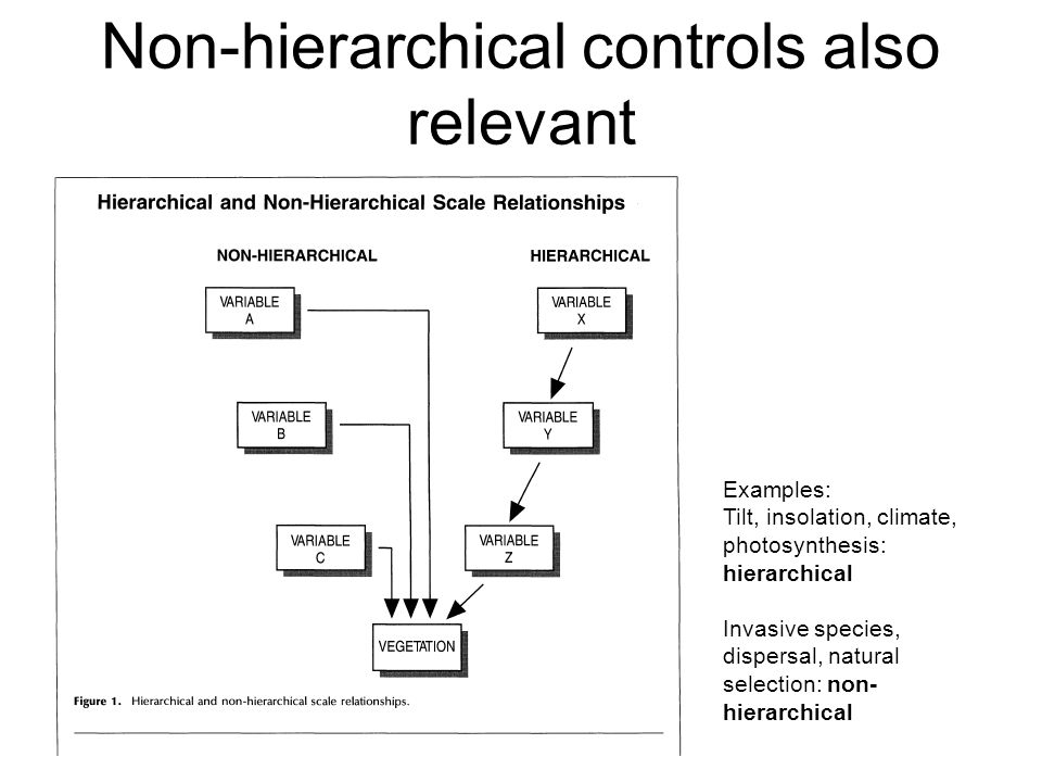 Non-hierarchical controls also relevant Examples: Tilt, insolation, climate, photosynthesis: hierarchical Invasive species, dispersal, natural selecti