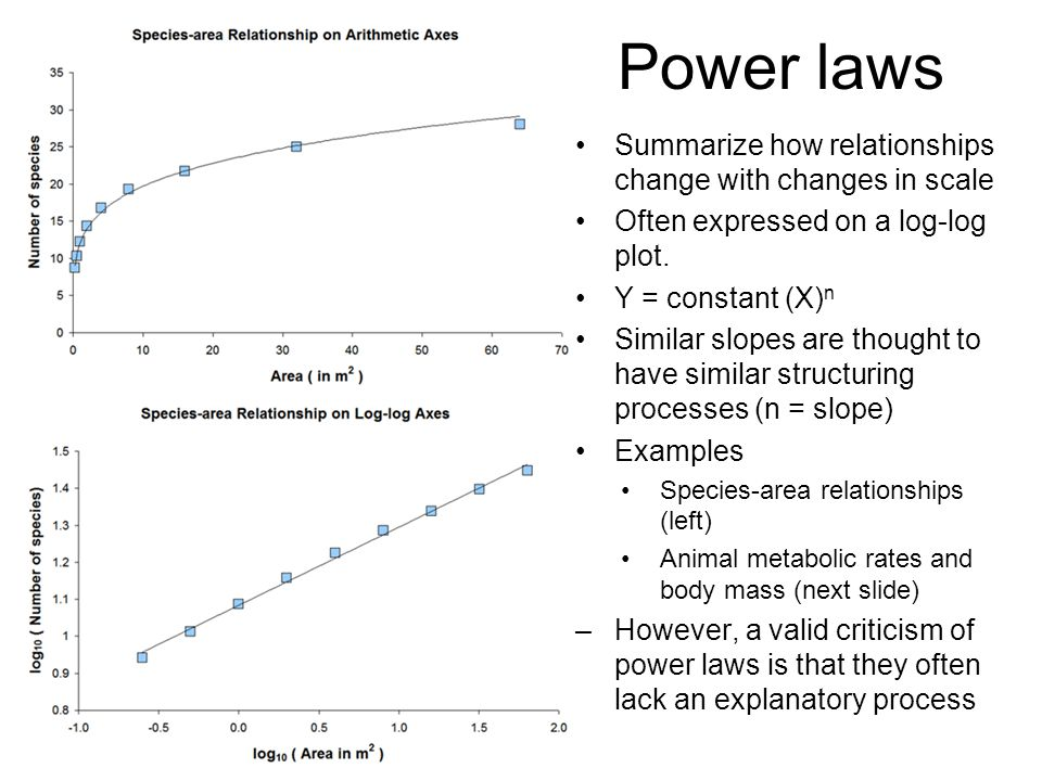 Power laws Summarize how relationships change with changes in scale Often expressed on a log-log plot. Y = constant (X) n Similar slopes are thought t