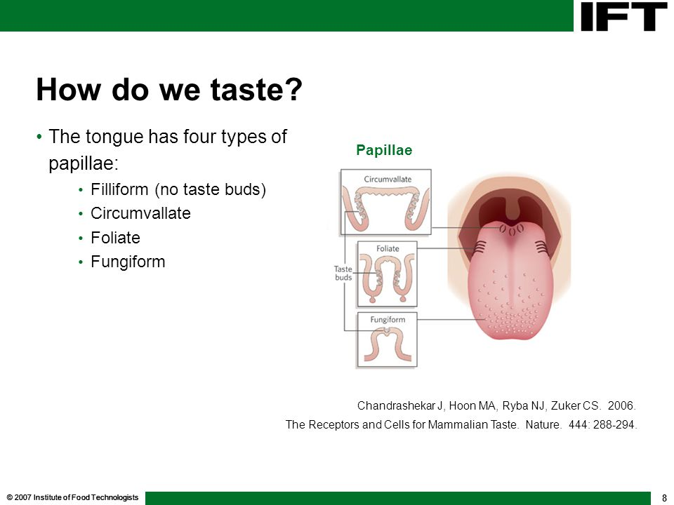 © 2007 Institute of Food Technologists 8 How do we taste? The tongue has four types of papillae: Filliform (no taste buds) Circumvallate Foliate Fungi