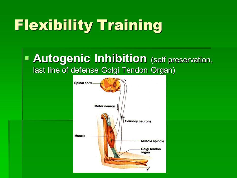 Flexibility Training  Autogenic Inhibition (self preservation, last line of defense Golgi Tendon Organ)