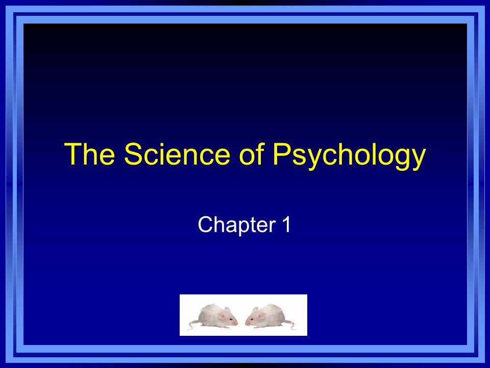 Web Resources Majoring in Psychology Graduate Study in Psychology: http://www.uky.edu/Education/EDP/psyprog.html Steer your students to this site to answer the many questions you undoubtedly answer yourself.