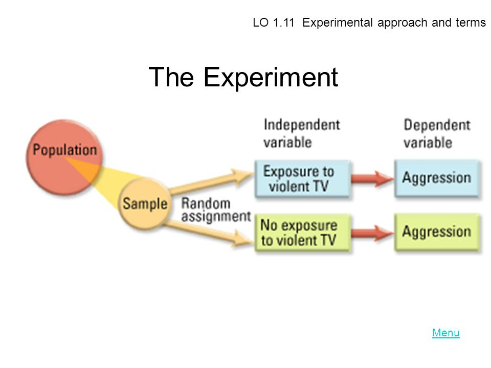 LO 1.11 Experimental approach and terms The Experiment