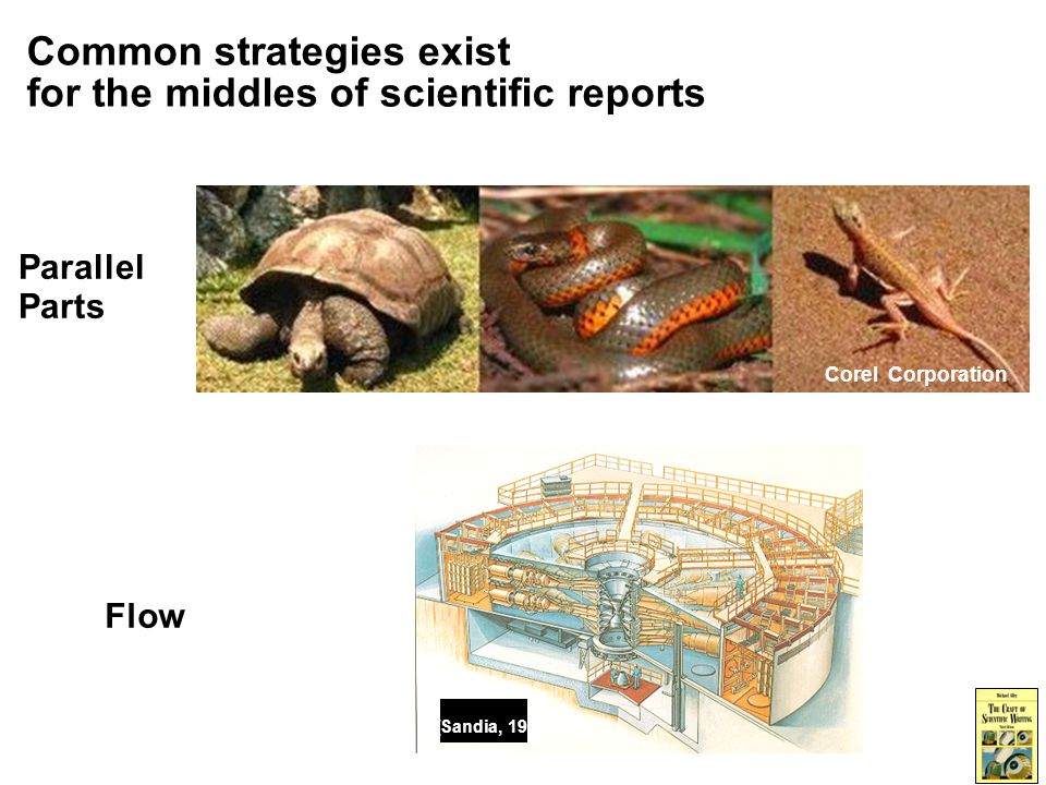 Common strategies exist for the middles of scientific reports Parallel Parts Corel Corporation Flow [Sandia, 1985]