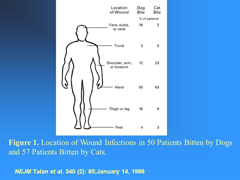 NEJM Talan et al. 340 (2): 85;January 14, 1999 Figure 1.