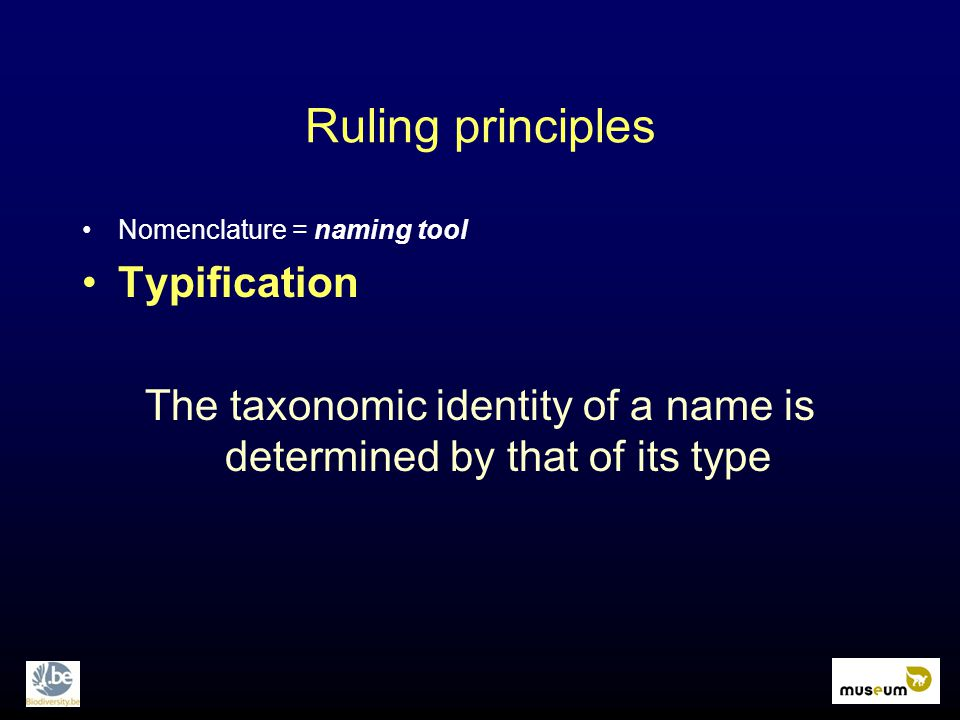 Ruling principles Nomenclature = naming tool Typification The taxonomic identity of a name is determined by that of its type