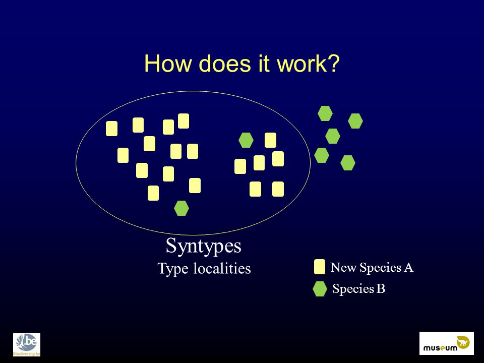 How does it work? Syntypes Type localities New Species A Species B