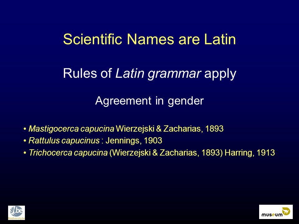 Scientific Names are Latin Rules of Latin grammar apply Agreement in gender Mastigocerca capucina Wierzejski & Zacharias, 1893 Rattulus capucinus : Jennings, 1903 Trichocerca capucina (Wierzejski & Zacharias, 1893) Harring, 1913