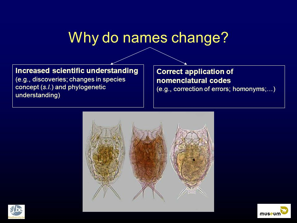 Correct application of nomenclatural codes (e.g., correction of errors; homonyms;…) Increased scientific understanding (e.g., discoveries; changes in