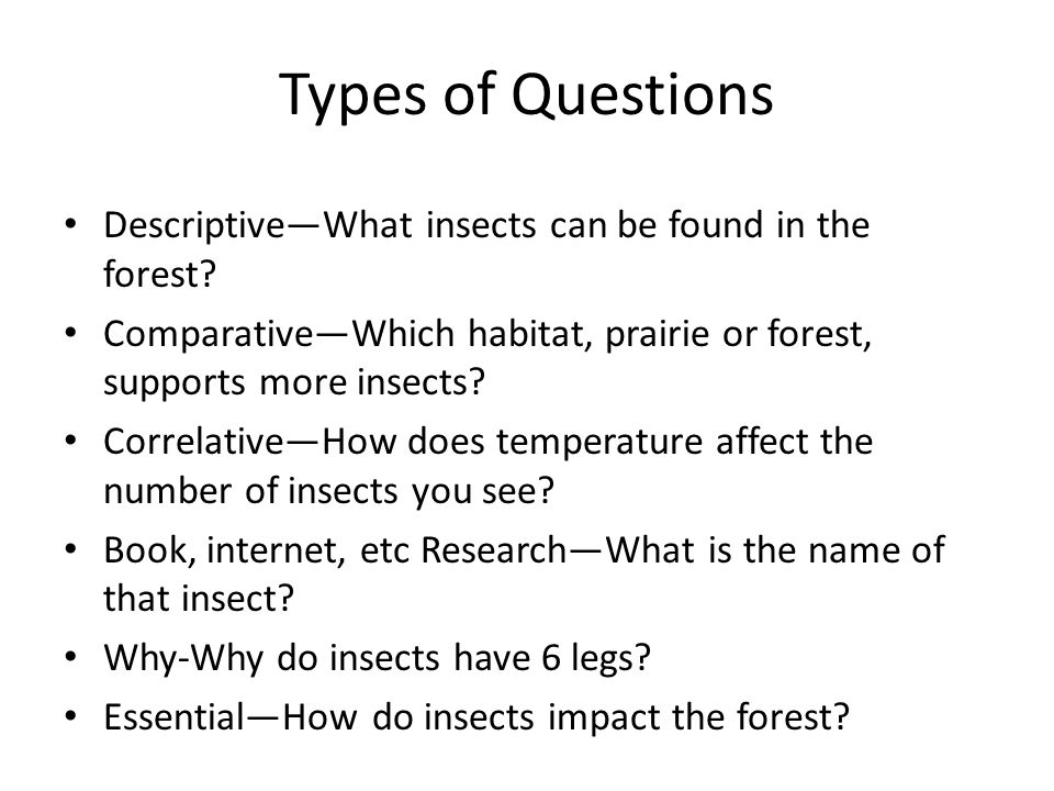 Types of Questions Descriptive—What insects can be found in the forest.