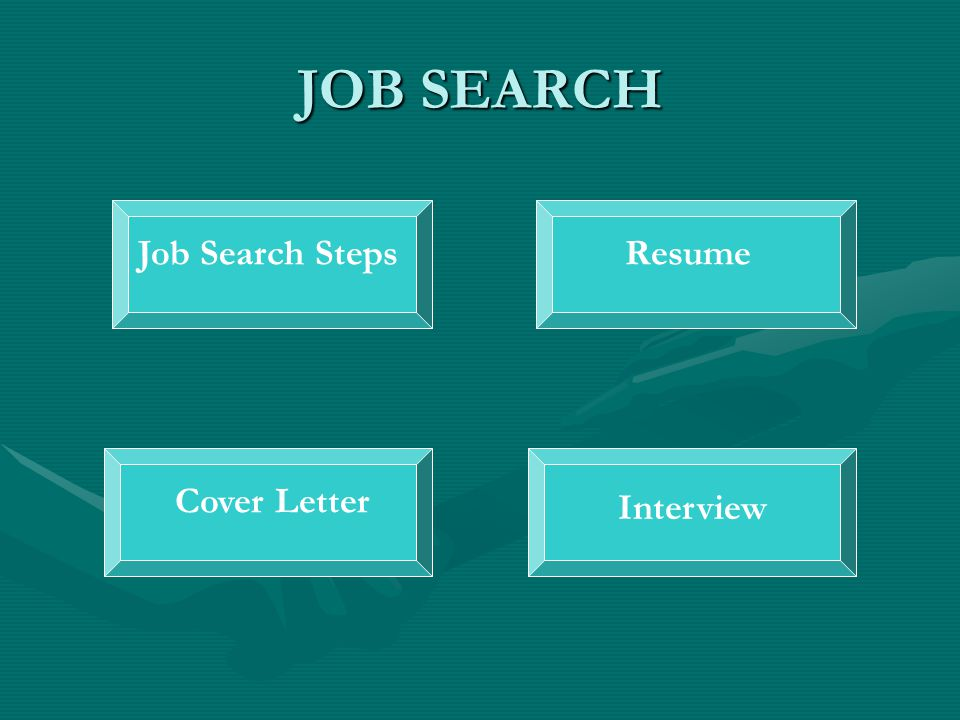 JOB SEARCH Job Search StepsResumeCover Letter Interview