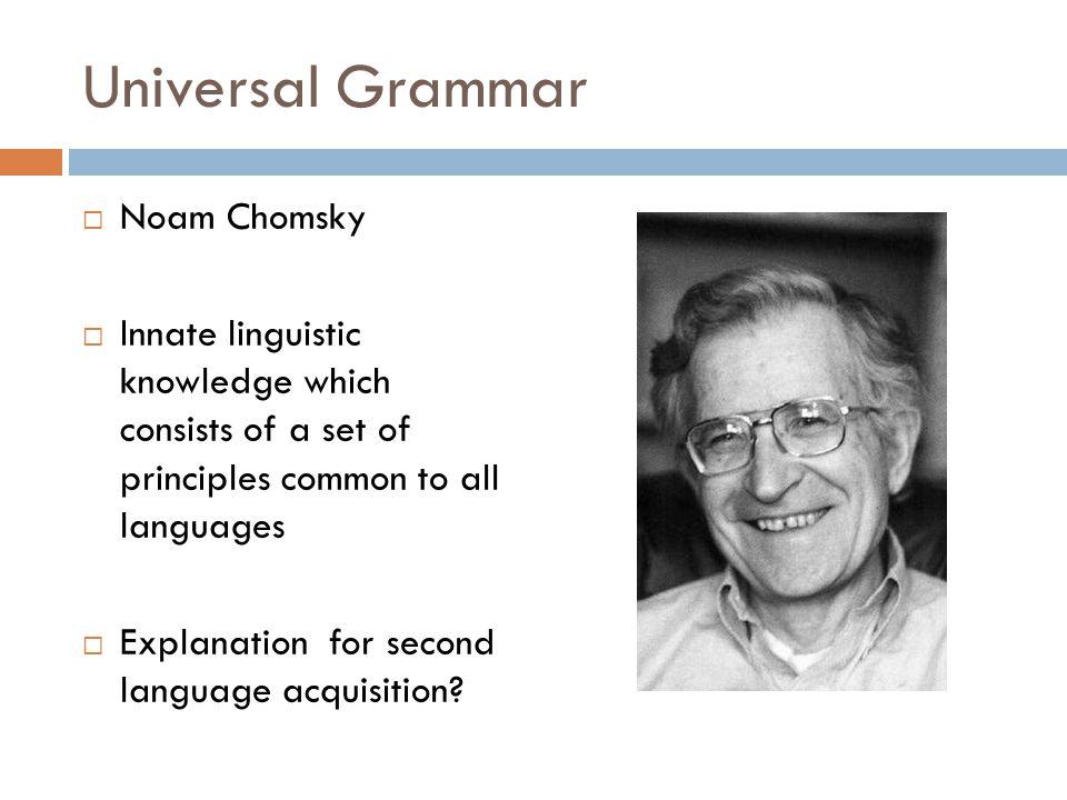 a report on noam chomskys argument on language acquisition