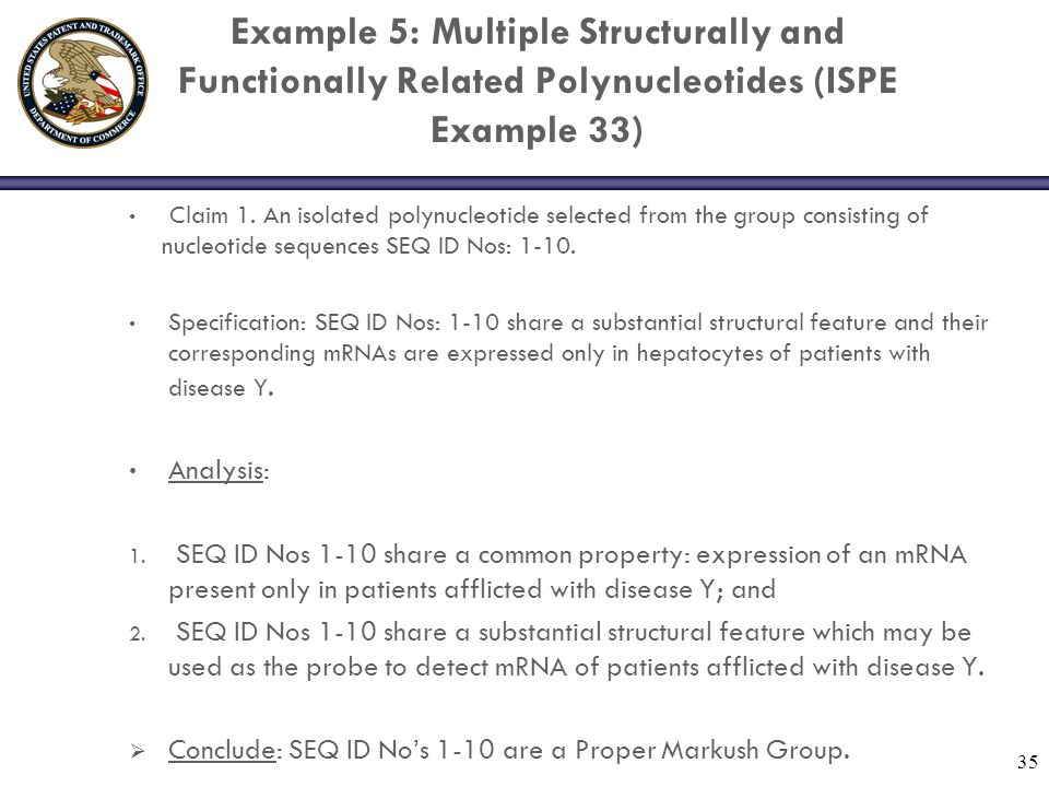 Example 5: Multiple Structurally and Functionally Related Polynucleotides (ISPE Example 33) Claim 1. An isolated polynucleotide selected from the grou