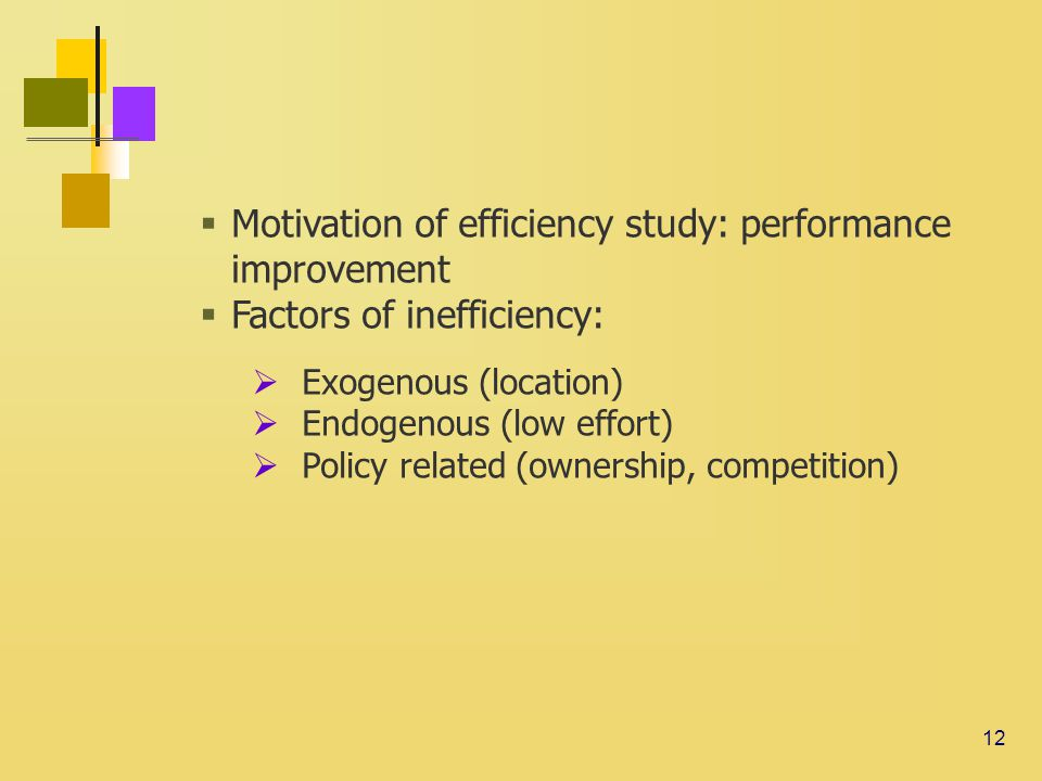 12  Motivation of efficiency study: performance improvement  Factors of inefficiency:  Exogenous (location)  Endogenous (low effort)  Policy related (ownership, competition)