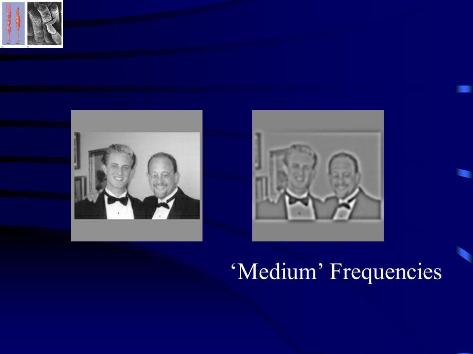 'Medium' Frequencies