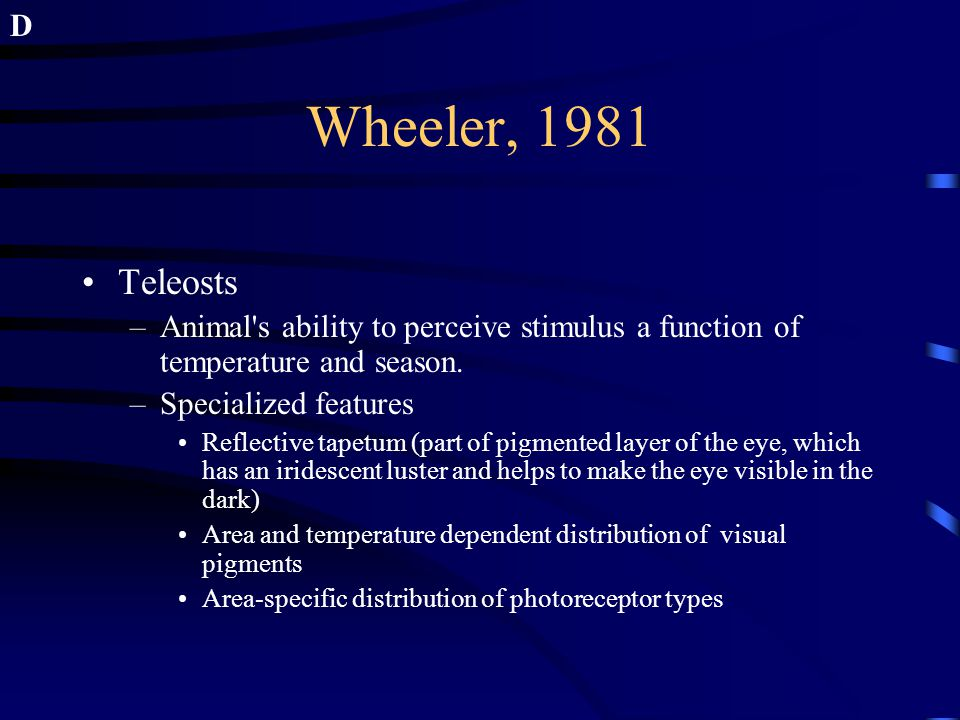 Wheeler, 1981 Teleosts –Animal's ability to perceive stimulus a function of temperature and season. –Specialized features Reflective tapetum (part of