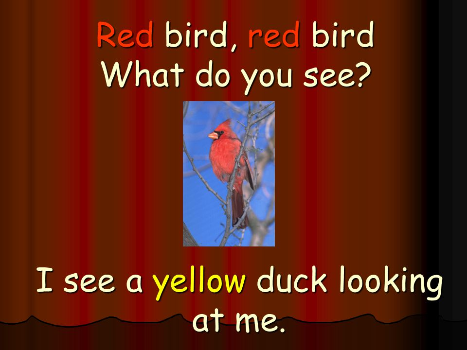 Red bird, red bird What do you see? I see a yellow duck looking at me.