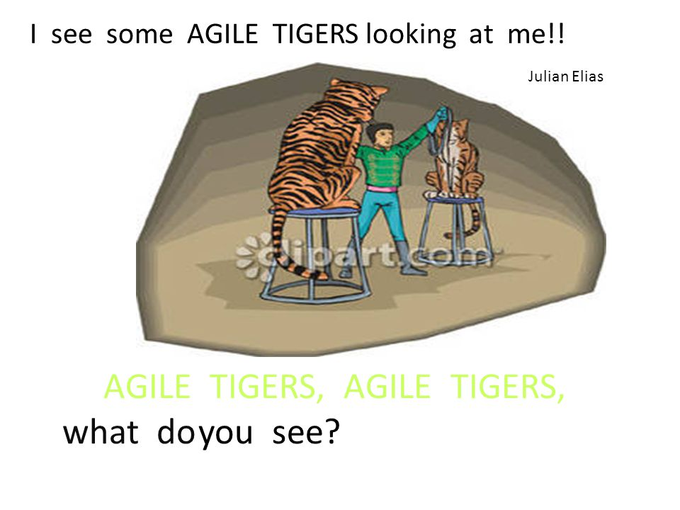 AGILE TIGERS, AGILE TIGERS, what doyou see I see some AGILE TIGERS looking at me!! Julian Elias