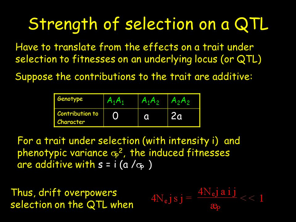 Strength of selection on a QTL Genotype A1A1A1A1 A1A2A1A2 A2A2A2A2 Contribution to Character 0 a2a Have to translate from the effects on a trait under