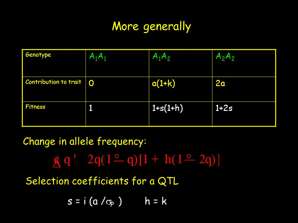 More generally Genotype A1A1A1A1 A1A2A1A2 A2A2A2A2 Contribution to trait 0a(1+k)2a Fitness 11+s(1+h)1+2s  Change in allele frequency: s = i (a /  P