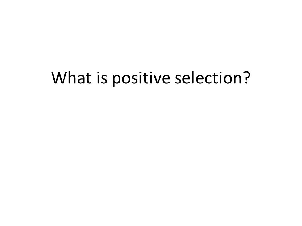 What is positive selection