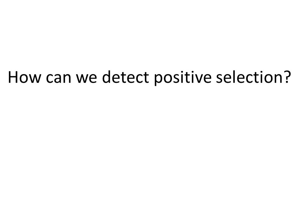 How can we detect positive selection