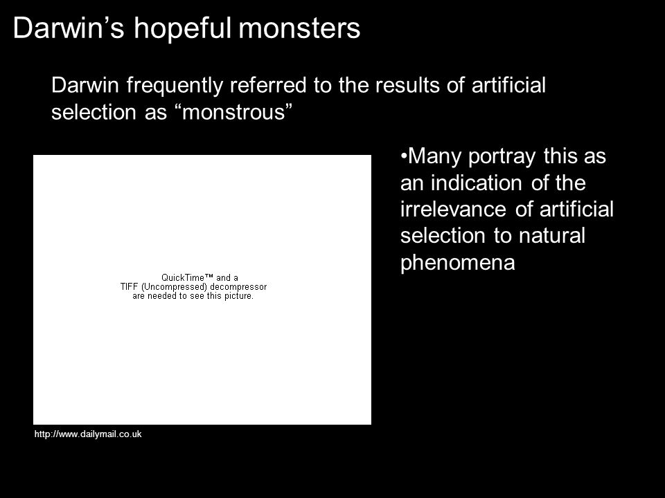 Darwin's hopeful monsters http://www.dailymail.co.uk Darwin frequently referred to the results of artificial selection as monstrous Many portray this as an indication of the irrelevance of artificial selection to natural phenomena