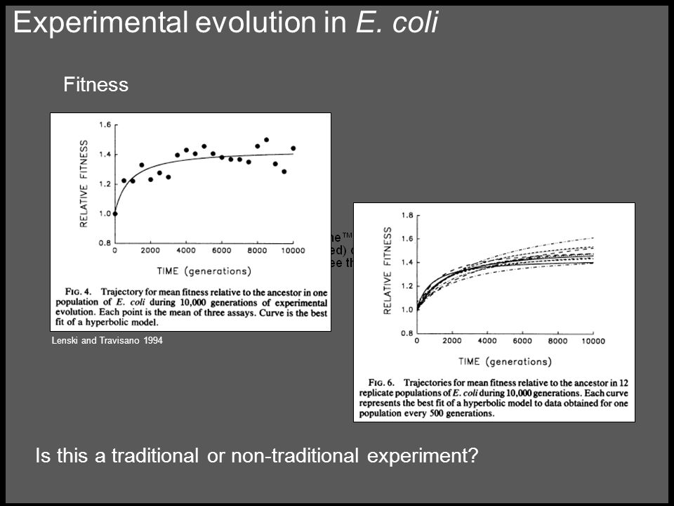 Experimental evolution in E.