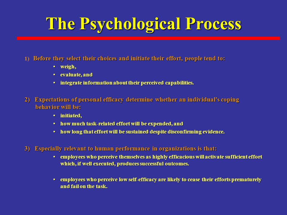 The Psychological Process Before they select their choices and initiate their effort, people tend to: 1) Before they select their choices and initiate their effort, people tend to: weigh,weigh, evaluate, andevaluate, and integrate information about their perceived capabilities.integrate information about their perceived capabilities.