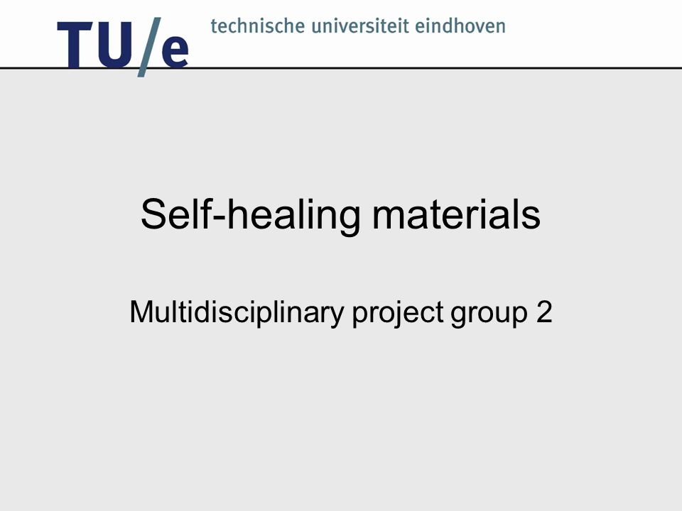 Self-healing materials Multidisciplinary project group 2
